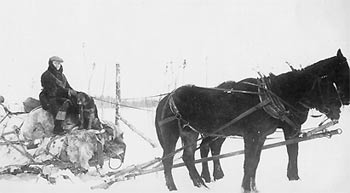 Photo of Jay Buzby and his horse drawn sled loaded with freight